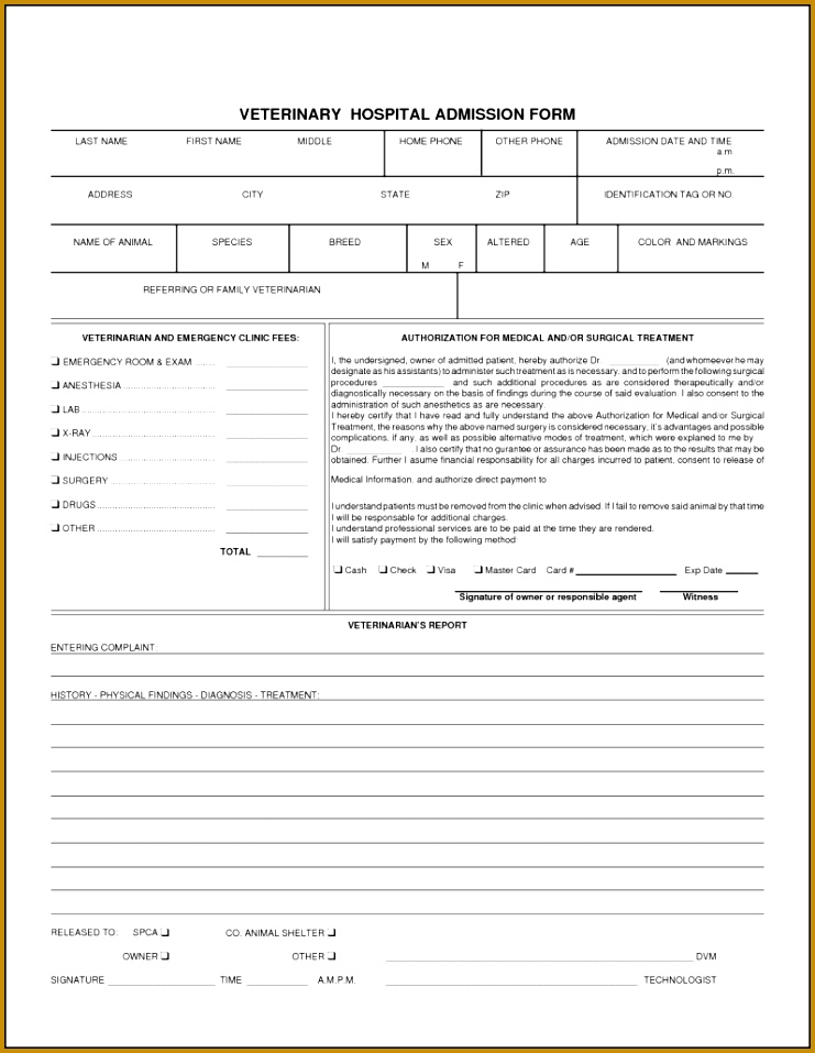 Anesthesia record form template 43055 medical record release form anesthesia record form template 43055 medical record release form template planning frame for report maxwellsz