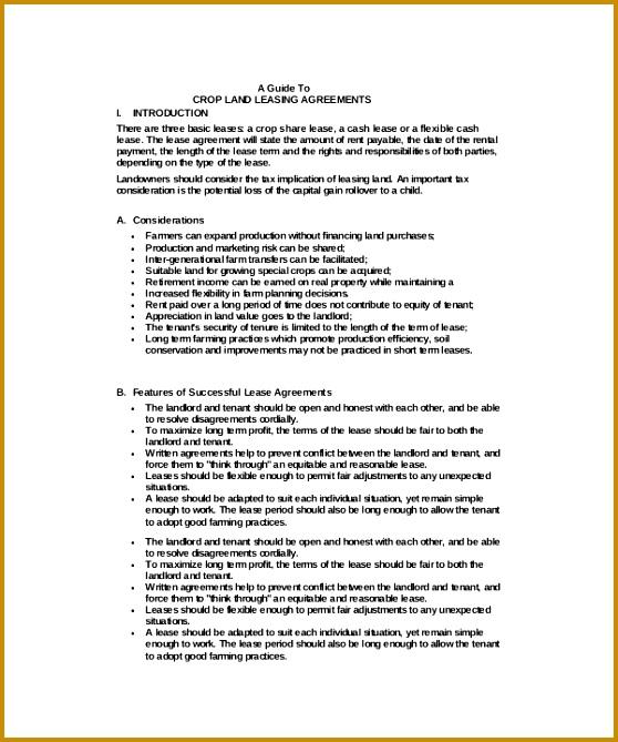 Crop Land Basic Rental Agreement 558669