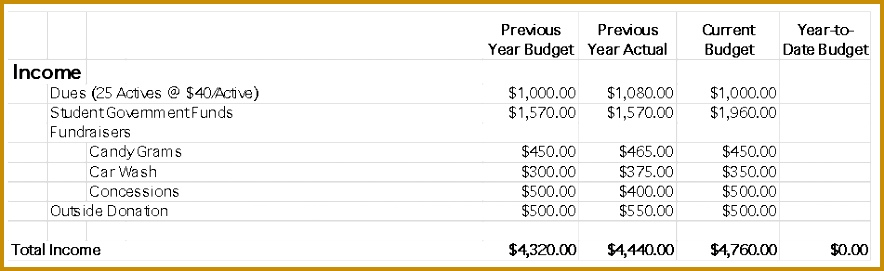 SAMPLE CHAPTER BUDGET 271884