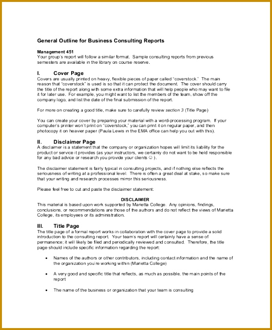 Consulting Report Outline 678558