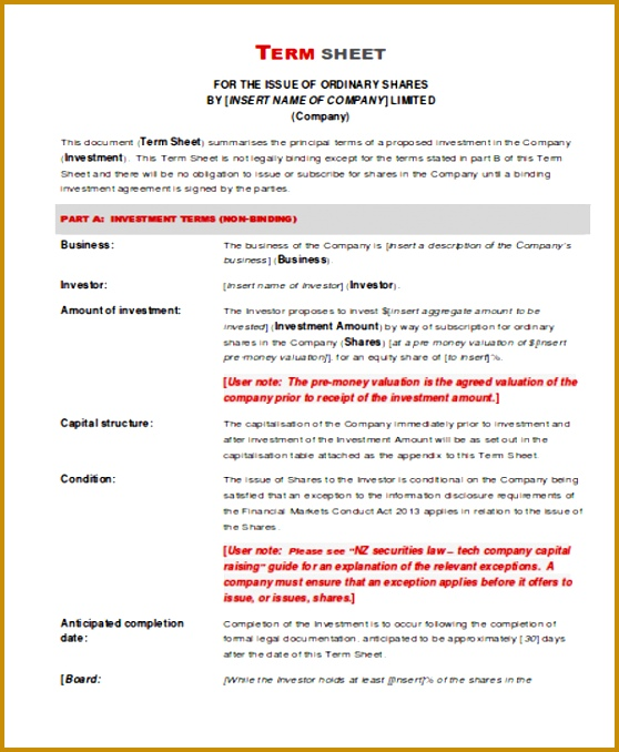 Investment Term Sheet in PDF 678558
