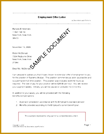 South Africa Employment fer Letter 332429