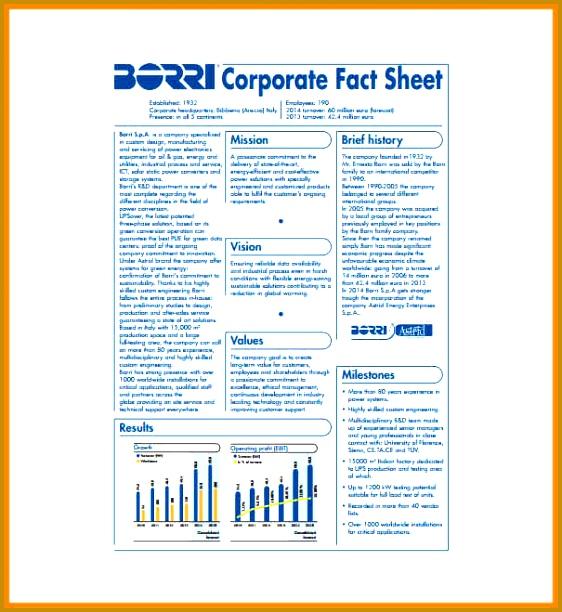 3 Company Fact Sheet Template
