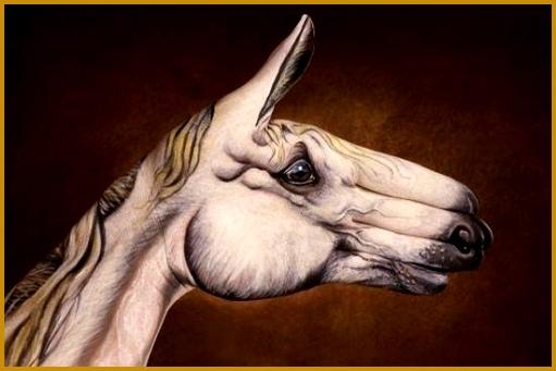 Horse 341511