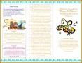 4 Course Catalog Template