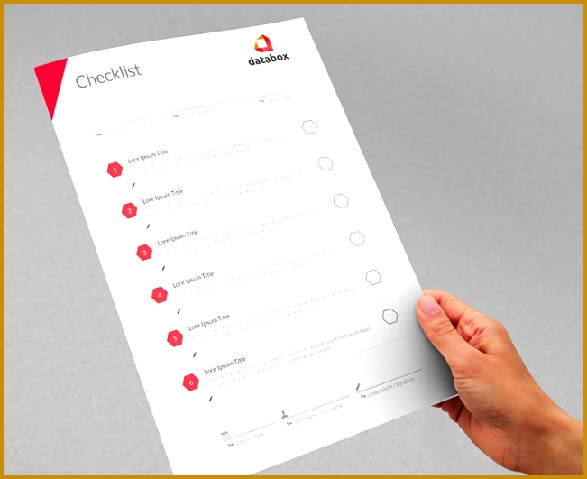 Professional Project Checklist Template 651531
