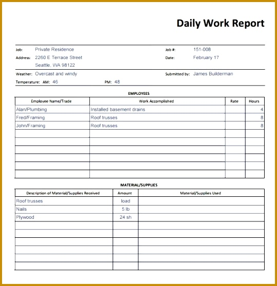 10 Daily report templates Word Excel PDF Formats 558539