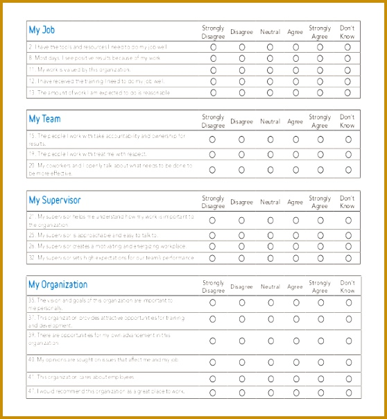 demographic survey template word