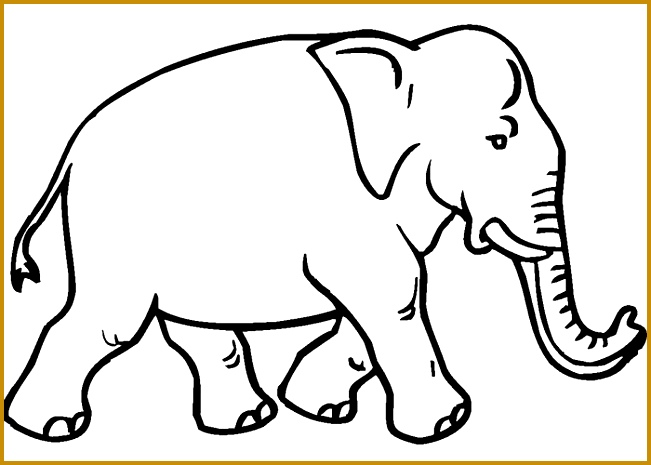 African Elephant Template 465651