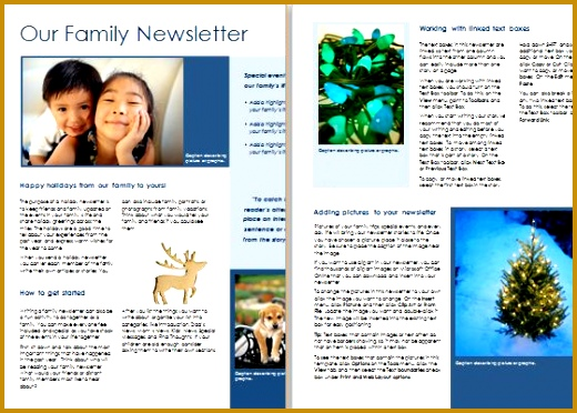 7 family newsletter examples fabtemplatez 7 family newsletter examples maxwellsz