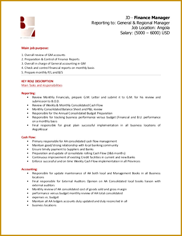7 finance executive job description pdf