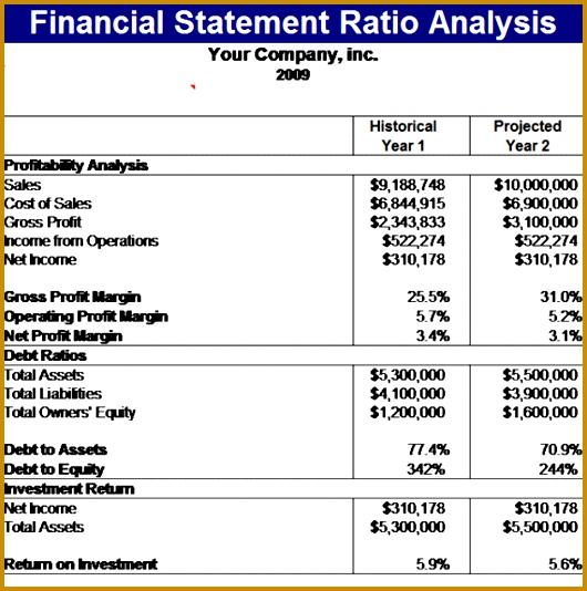 Financial Statement Ratios Template 534530
