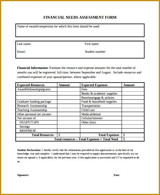 Sample Financial Needs Assessment Form 558678