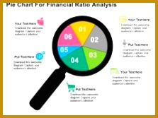 Pie Chart For Financial Ratio Analysis PowerPoint Template 167223