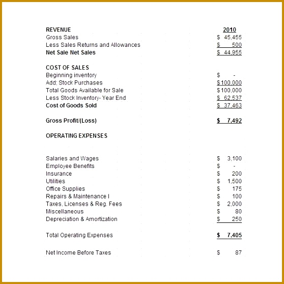 Business Financial Statement Template Excel 558558