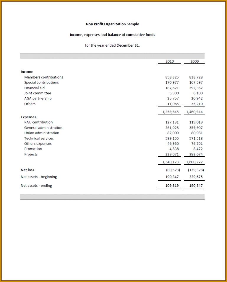 non profit financial statement template excel NPOFS1 956768