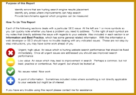 SEO Audit Report Format And SEO Performance Report Template 279195