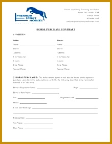 Horse Template Printable 219283