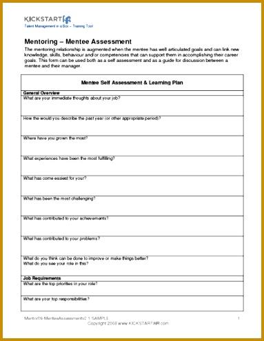 Mentee Assessment 383495