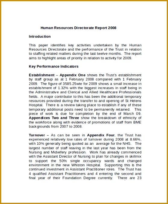 HR Board Report Template 678558