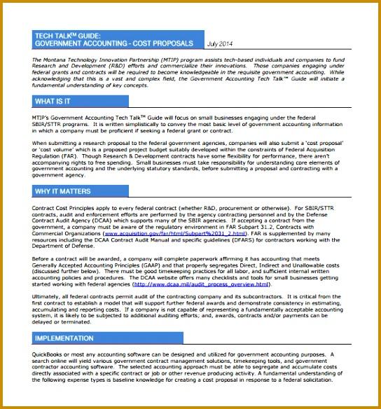 3 It Support Proposal Template Fabtemplatez