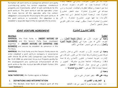 6 Joint Venture Term Sheet Template Fabtemplatez
