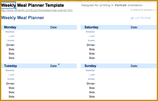 medication spreadsheet organizer