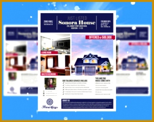 Real Estate advertising Flyer Template Editable in Microsoft Word Publisher Powerpoint shop 316251