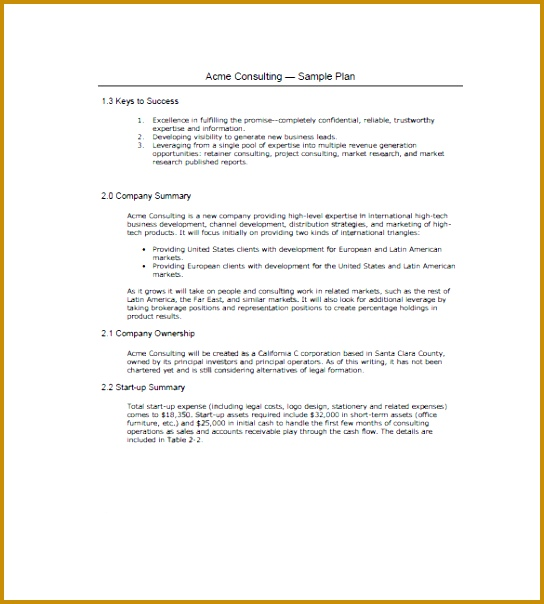 Startup Business Plan Template for Mac 604544