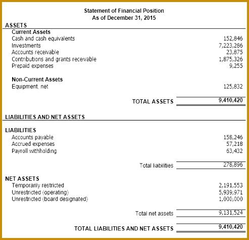 Understanding Nonprofit Financial Statements Non Profit Financial Statement Template Free 2016 474493