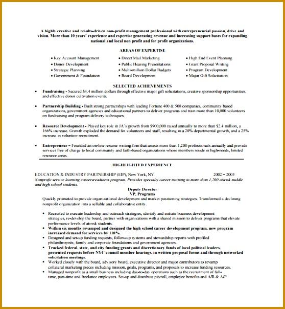 Sample Non Profit Proposal Template 558604