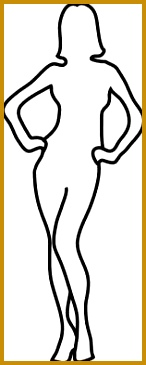 Download female human body outline drawing 365146