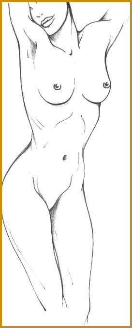 Learn to Draw Human Body 676273