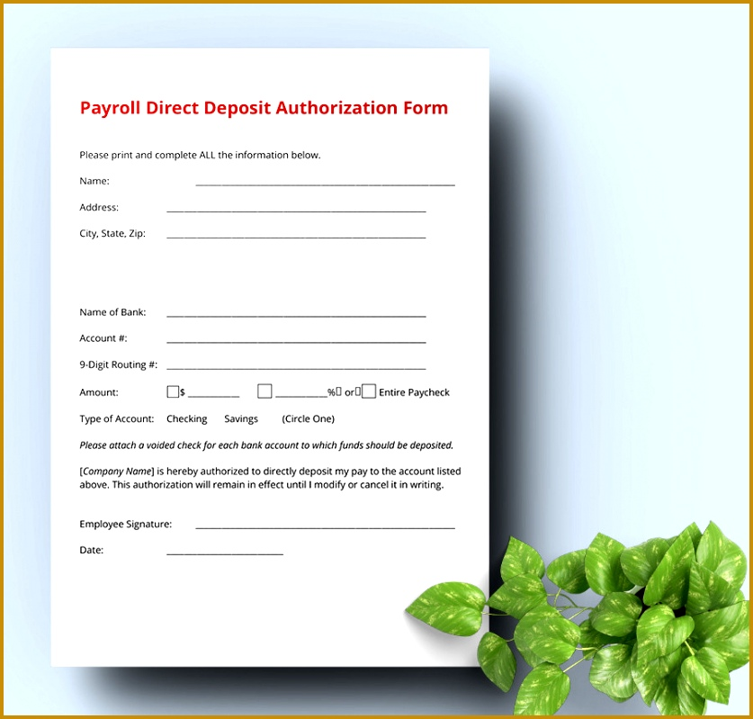3 payroll direct deposit authorization form template