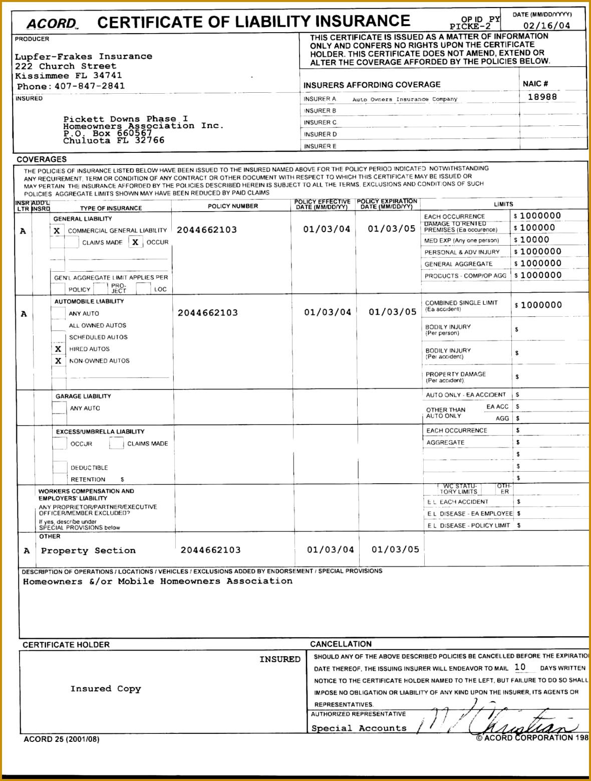 t voucher templates word finance Financial Overview Template report template t voucher templates word personal balance 11801558