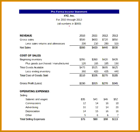 10 Pro Forma Financial Statement Template 557524