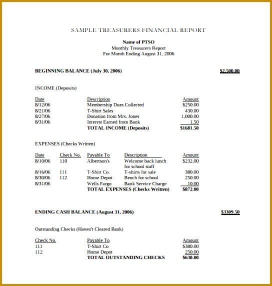 Treasurers Financial Report PDF Template Free Download 572544