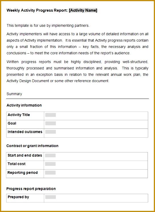 Tool Weekly Activity Progress Report Template 744544