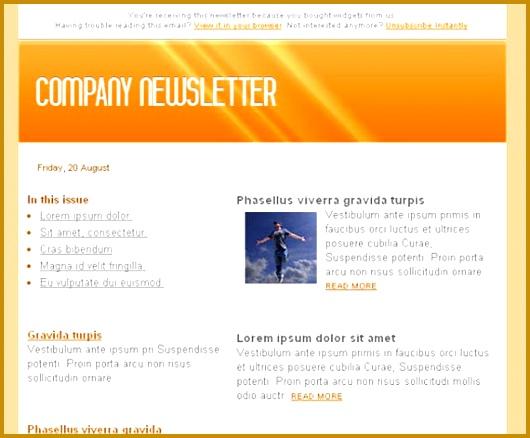 5 Sample Of Company Newsletter   FabTemplatez