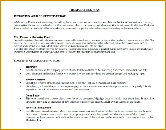 The Sample Marketing Plan Free Download Template 544427