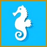 Seahorse cut out of paper white on a blue background 158158