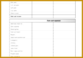 Profit and Loss Statement and Balance Sheet Template and Worksheet In E Statement Balance Sheet In 195279