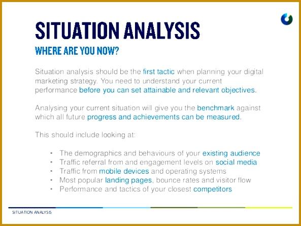Marketing Plan Template Situation Analysis 445593