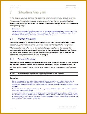 Marketing Plan Template Situation Analysis 383292