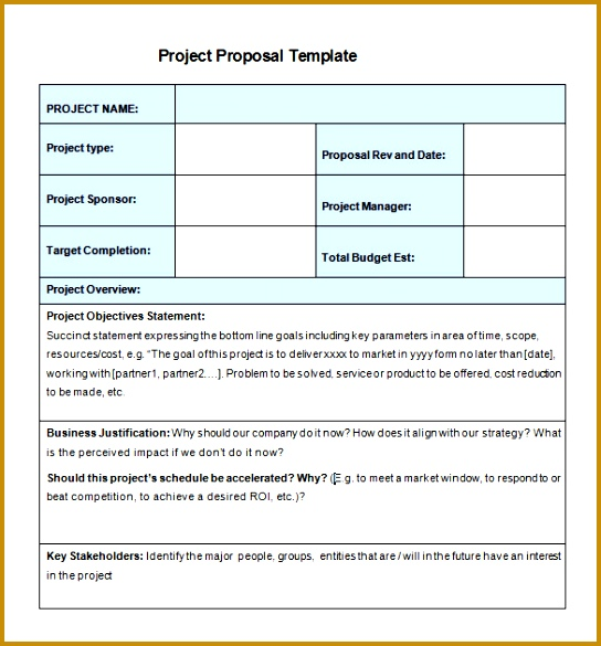 New Project Proposal Sample Template 585544