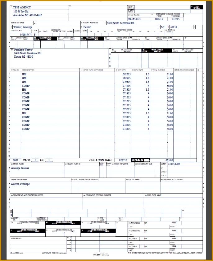 Figure 333 Example UB 04 Form 838686