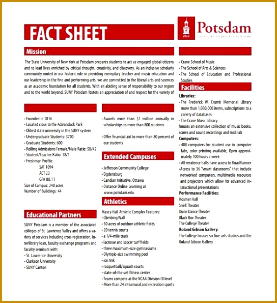 Information Sheet Template Word Vendor Information Form Vendor 595544