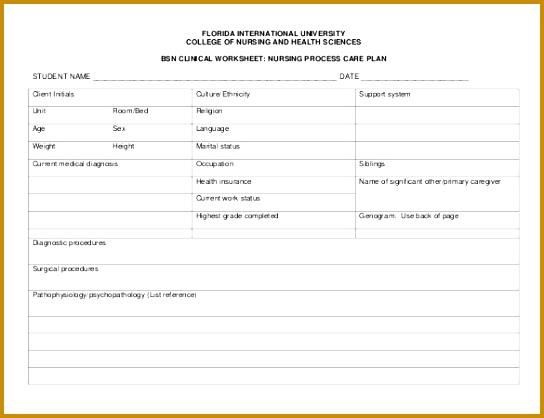 Bsn Clinical Nursing Care Plan PDF Free Template 418544