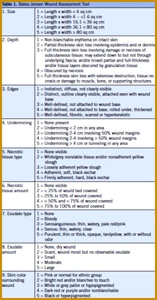 Bates Jensen Wound Assessment Tool 595312
