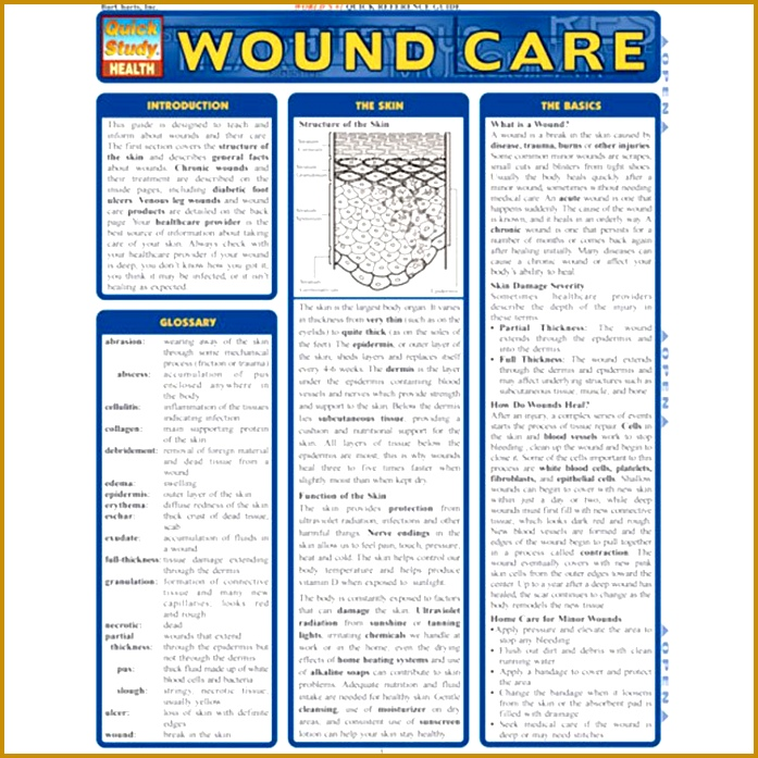 Wound Care Documentation Template by Nursing Wound Assessment Forms Printable Quotes 697697